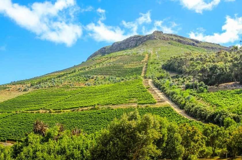 Sur la route des vins, Cape Town