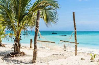 Safari à Ruaha et plage à Zanzibar, voyage Afrique