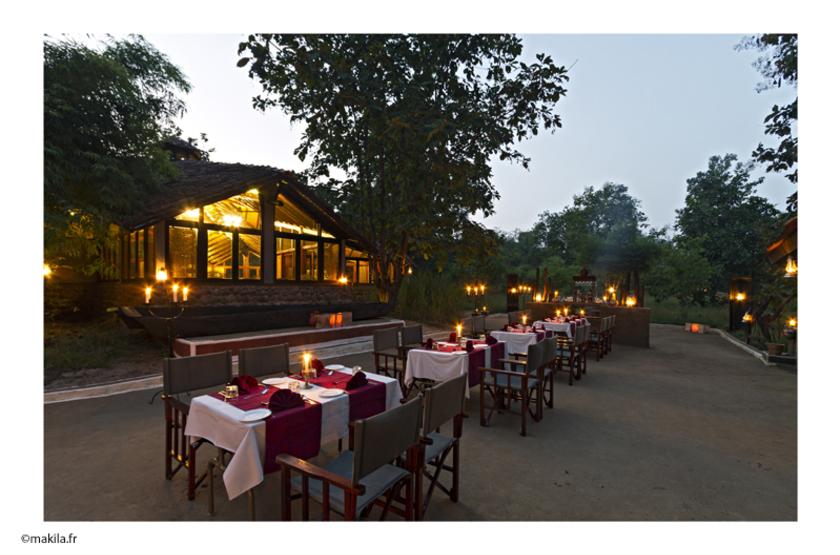Safari en Inde, toute la magie du safari animalier. Reni Pani Jungle Lodge.