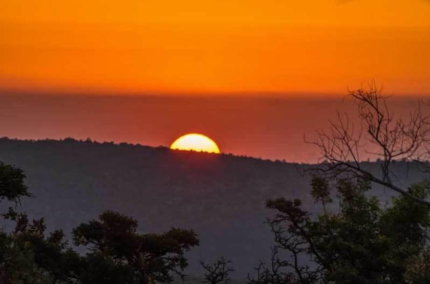 Réserve de Welgevonden, Afrique du Sud