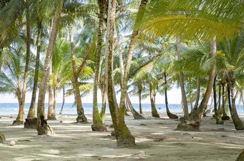 Plage dans l'archipel de San Blas, Panama