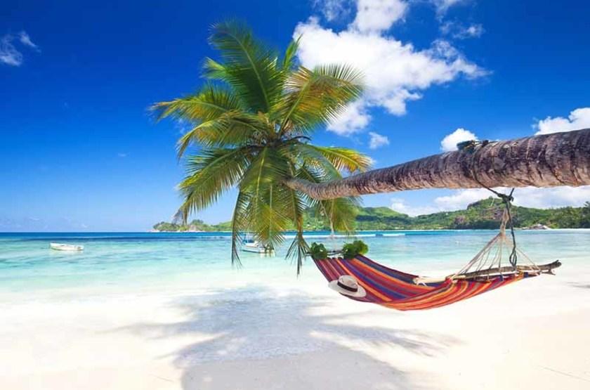 Île paradisiaque des Seychelles