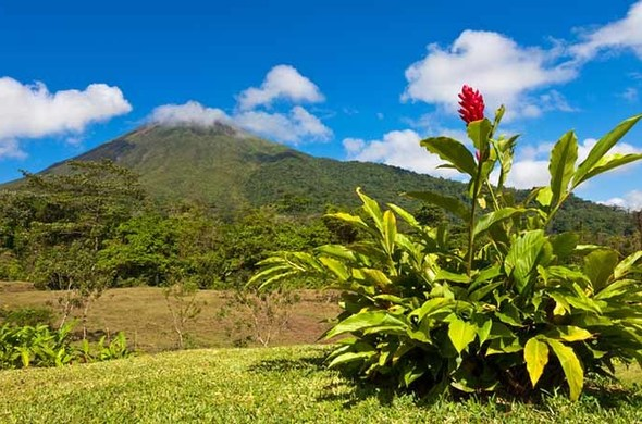 Les Parcs Nationaux du Costa Rica, voyage Amériques