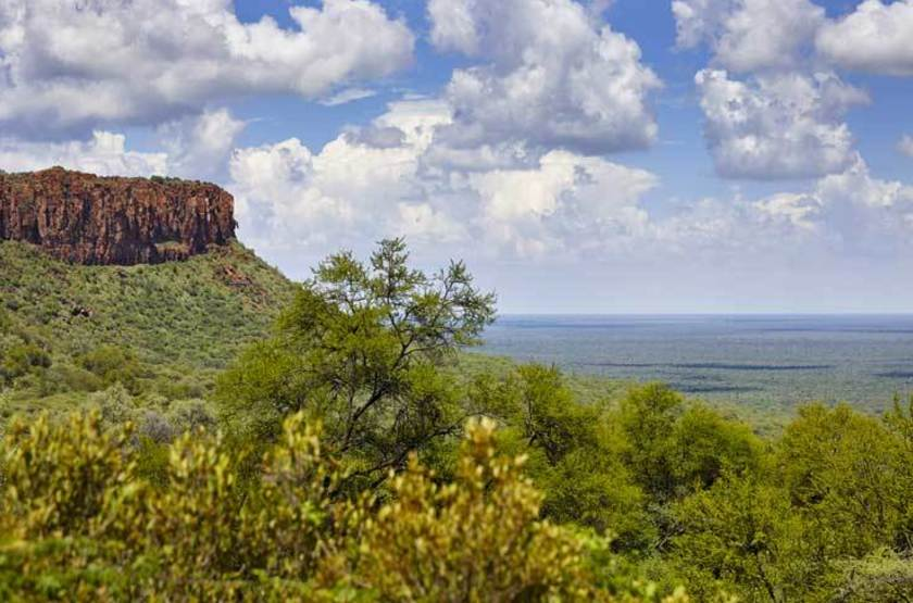 Parc national de Waterberg, Namibie