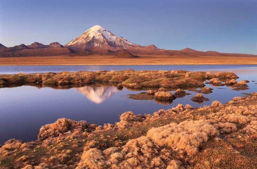 Parc National de Sajama, Bolivie
