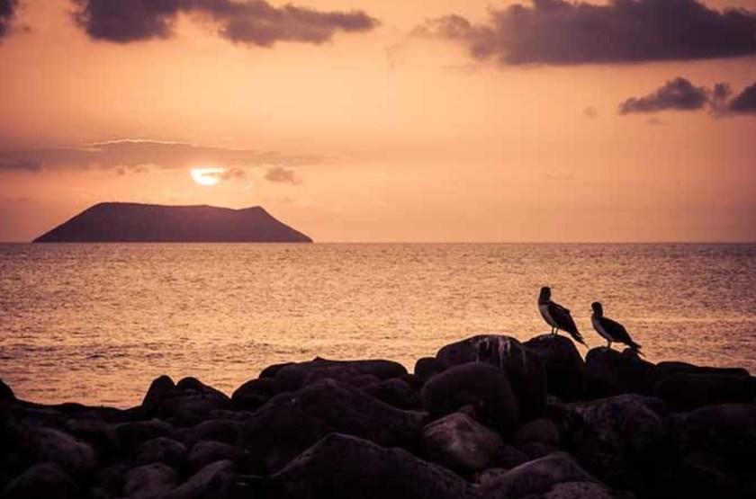 Île Seymour Nord, Îles Galapagos