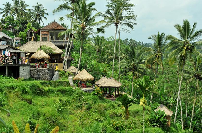 Tegalalang, Ubud, Bali, Indonesie
