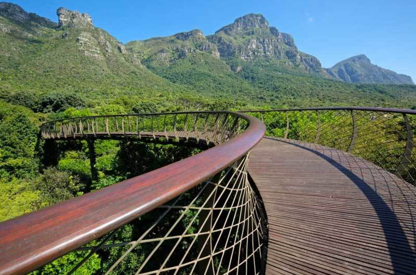Jardins botaniques Kirstenbosch, Cape Town
