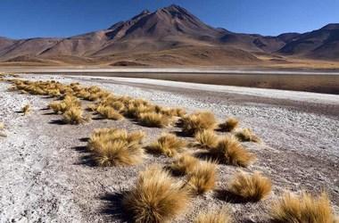 Voyage Chili Bolivie, duo magique, voyage Amériques