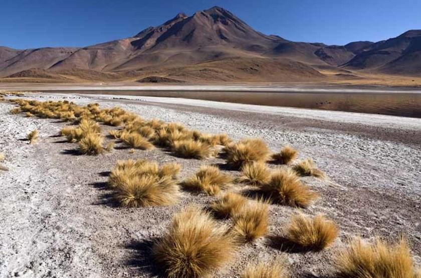 Volcan Miniques et laguna Miscanti, désert d'Atacama