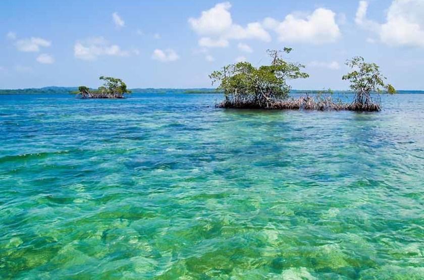 Les îles Bocas del Toro, Panama