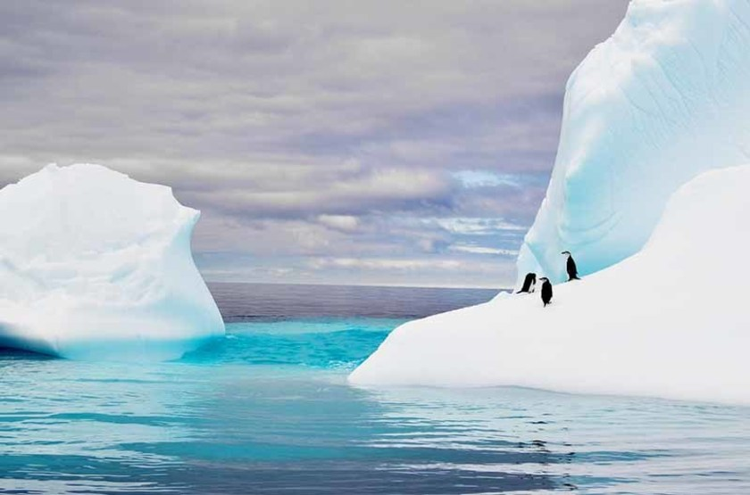 Iceberg Antarctique