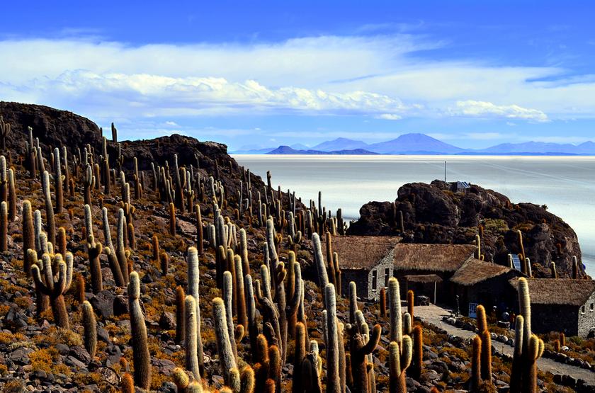 Salar d'Incahusi, Uyuni, Bolivie