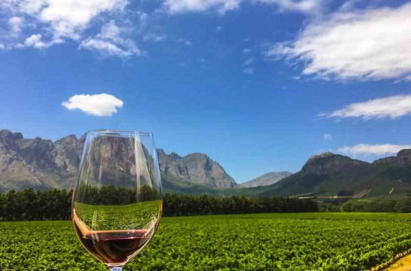 Vignes à Franshoek, Afrique du Sud