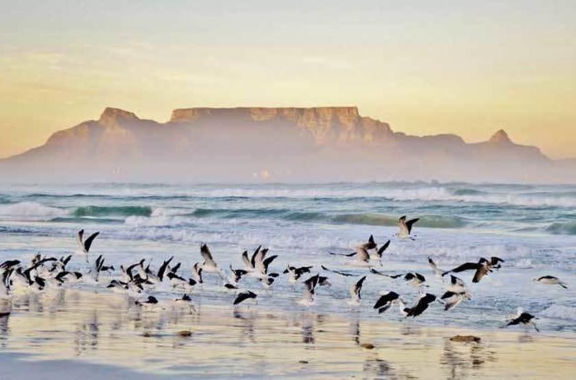 Montagne de la Table, Le Cap, Afrique du Sud