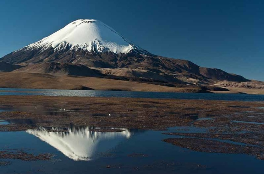 Volcan Parinacota, Parc National Lauca, Chili